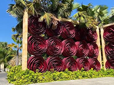 Rose Gate & Eden Garden